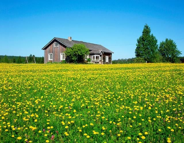 Finland, The half a million holiday cottages, or 'mökki' in Finnish, are proof of Finland's strong cottage culture where nature really is in reach.