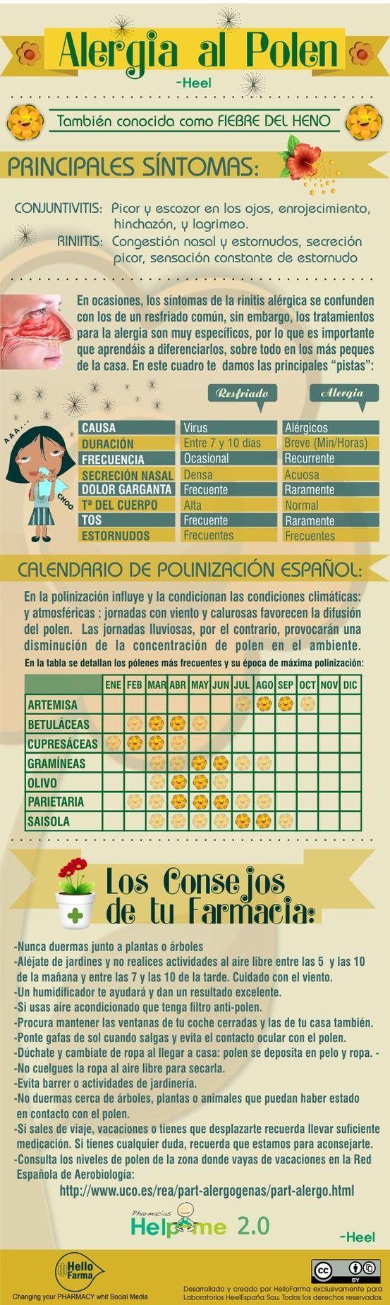 Cómo reconocer y prevenir la alergia al polen. #alergia #infografia