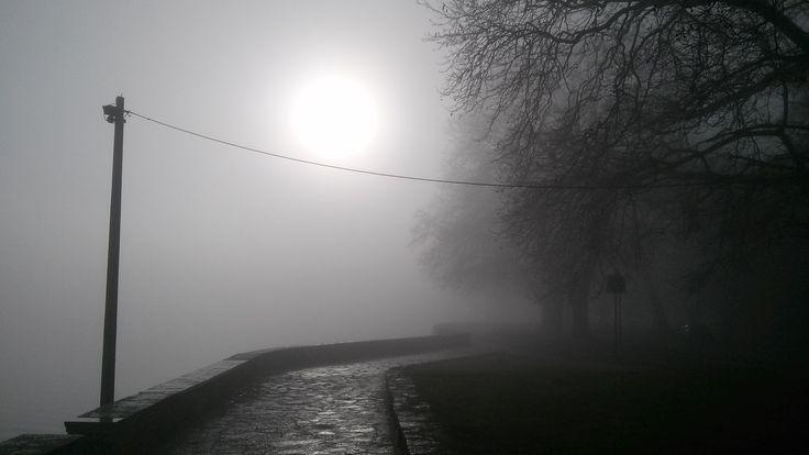 Misty Lake Pamvotida Ioannina Hellas