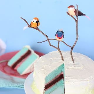 Or birds. | 28 Insanely Creative Ways To Decorate A Cake That Are Easy AF