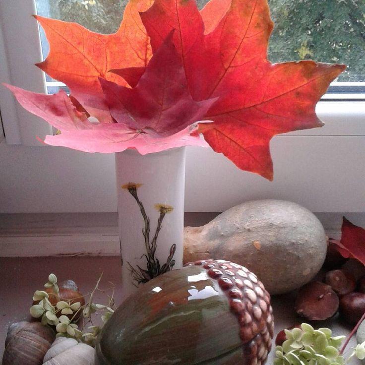 Na dobranoc bukiecik z liści klonu.#dobregowieczoru #miłychsnów #żołędzie #tykwa #muszelki #goodnight #bouquet #leafs #acorns #seashells