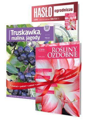pakiet_HO_RO_TMJ- prenumerata www.plantpress.pl