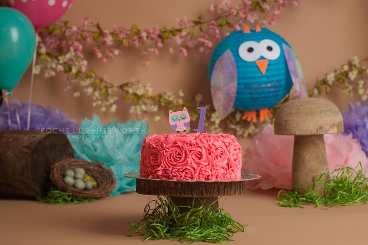 Owl and Cherry Blossom Spring Cake Smash (pink, purple, teal and blue)