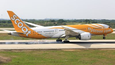 Scoot (SG) Boeing 787-Dreamliner 9V-OFA aircraft, named ''Eight Treasures'', landing at China Nanjing Lukou International Airport. 19/05/2016. (Eight Treasures are popular symbols in Chinese art=the wish granting pearl-the double lozenges-the stone chime-the pair of rhinoceros horns-the double coins-the gold or silver ingot-coral & wish-granting scepter).