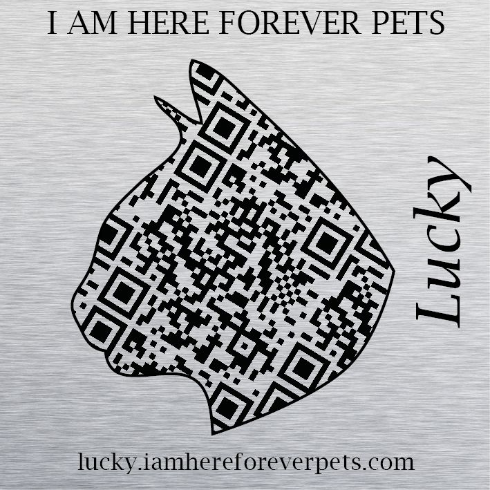 Our sweet cat Lucky, RIP beautiful girl <3 http://lucky.iamhereforeverpets.com/