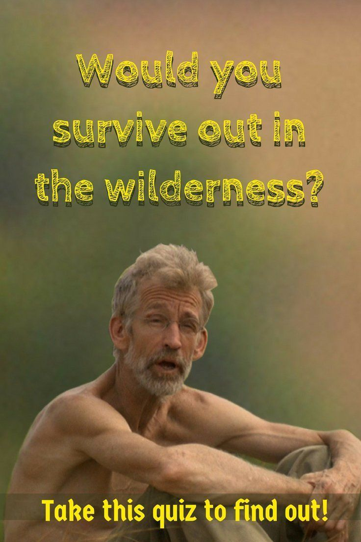 Let's put your survival skills to the test with this Wilderness Survival Quiz. Do you think you'll stay alive at Day 1? #cattentwood