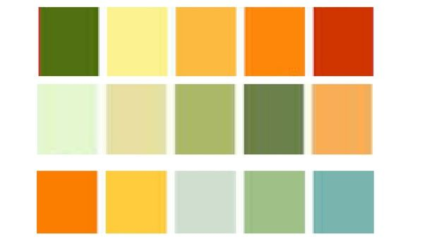 Image Result For Colors That Go With Burnt Orange Orange Walls Orange Color Schemes Orange Color Palettes