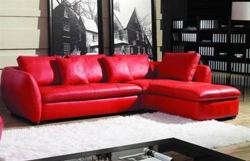 Red leather couches, black and white photography, big shaggy rug