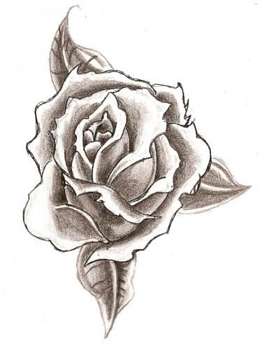 Easy pencil drawings of flowers pencil drawings of for Simple flower designs for pencil drawing