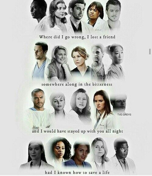 Grey's Anatomy                                                                                                                                                                                 More
