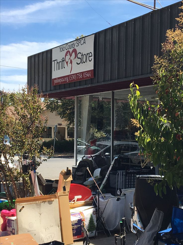 SPCA Thrift Store (Davis, CA). Disappointing visit (9/2/16). Contrary to the junky exterior, my hopes were dashed when I was unable to find anything of interest.