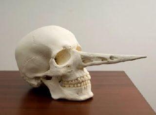"""Bene Bergado """"Cráneo de Pinocho abogado"""", vía El Dado del Arte"""