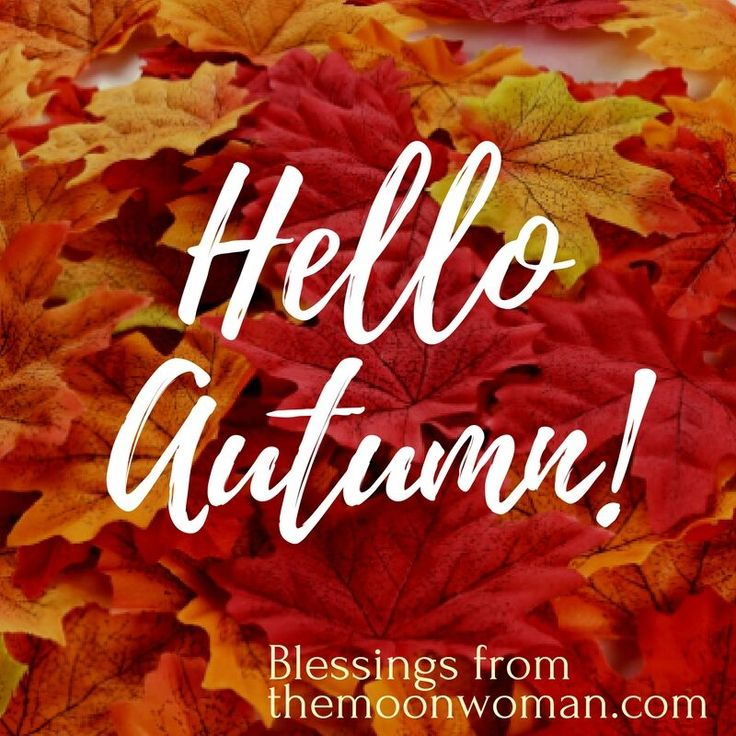 Today is officially the first day of Autumn for those of you in the Southern hemisphere.  Autumn is the time when we are asked to ponder, 'What have I outgrown?' What needs to be released so I have room to deepen my roots to support new growth for that which my heart is most aligned with now?  So give yourself the gift of space to acknowledge what this is for you.   Blessings on your season, Tanishka