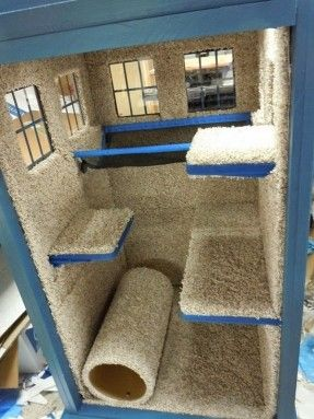 Tardis Cat Playhouse DIY | HGTV Decor