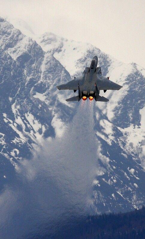 McDonell Douglas F-15E Strike Eagle