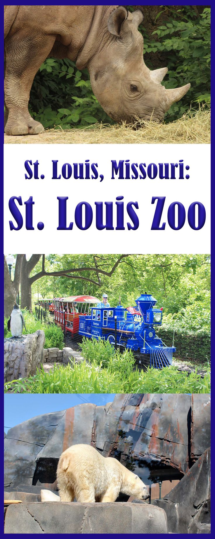 Great Tips for visiting the St. Louis Zoo in Missouri
