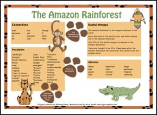 Advantage and Disadvantage of Human Impact on Rainforest