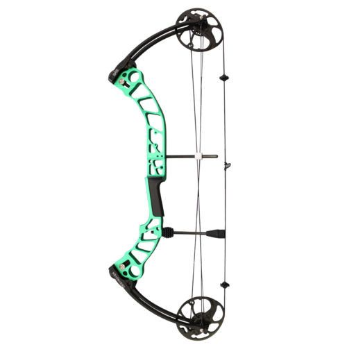 SAS Destroyer 55 lbs Compound Bow