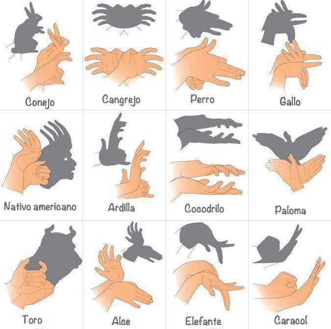 Guía para hacer figuras con las sombras de las manos.