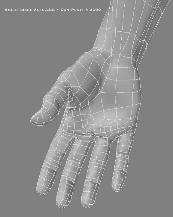 Hand wireframe palmside