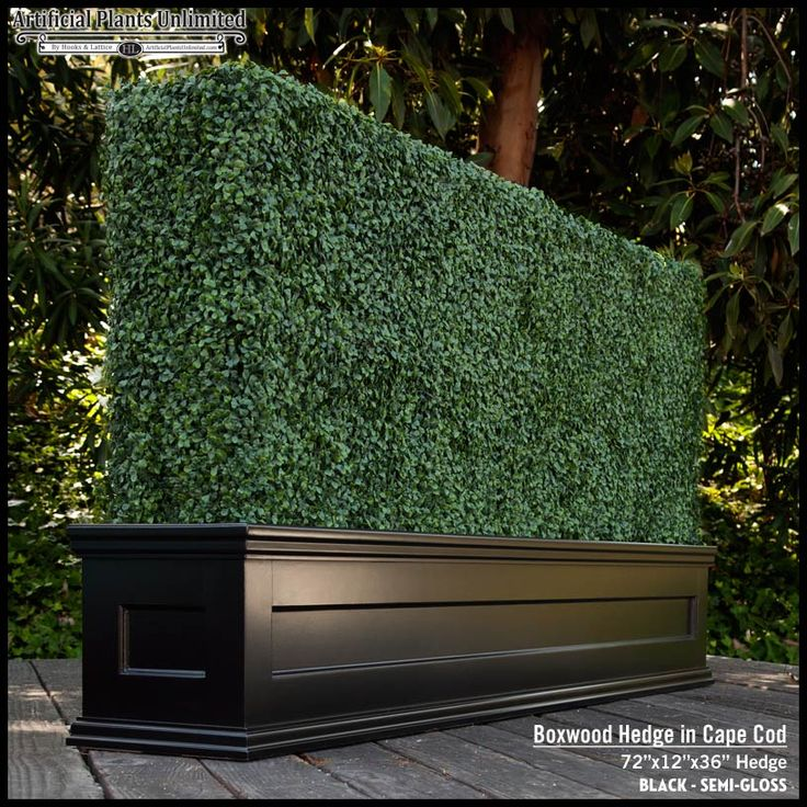 Commercial Walls Landscape Design: Custom Artificial Hedge In Black Planter, Cape Cod Style