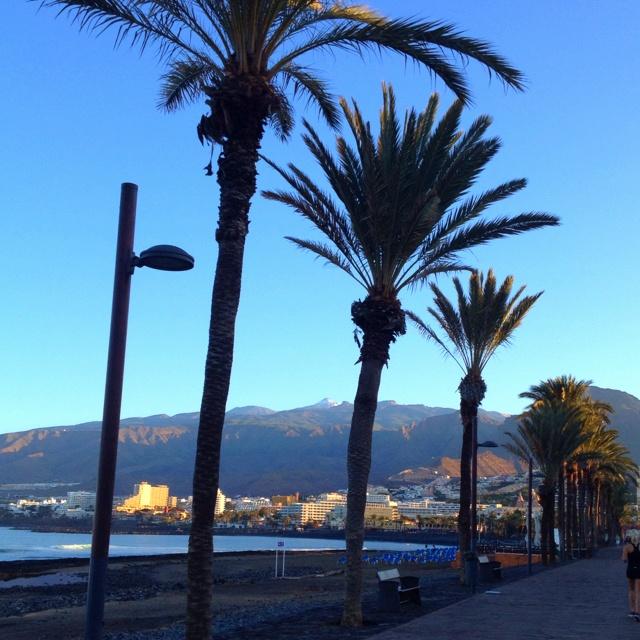 Sunrise over Playa de Las Americas, Tenerife