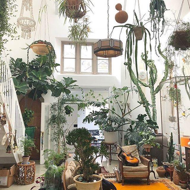 Loft Houseplants Plant Decor Room With Plants Plant Aesthetic