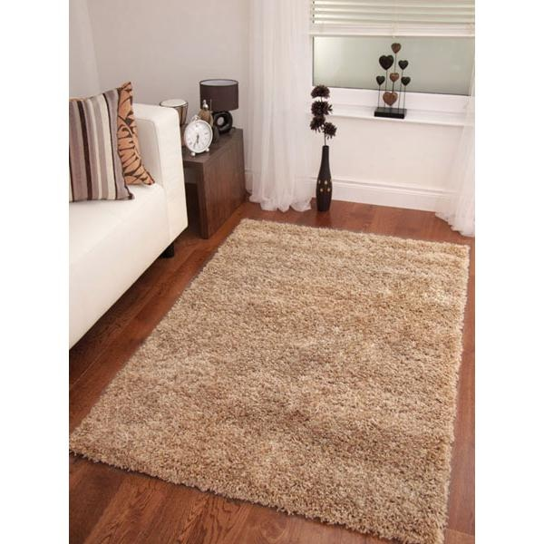 dealsdirect.com.au has cheap large rugs :)