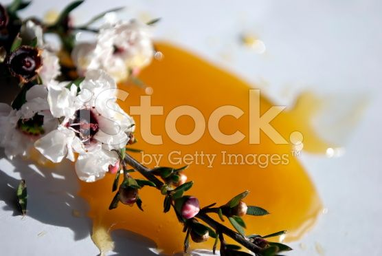 Manuka Honey & Flower royalty-free stock photo
