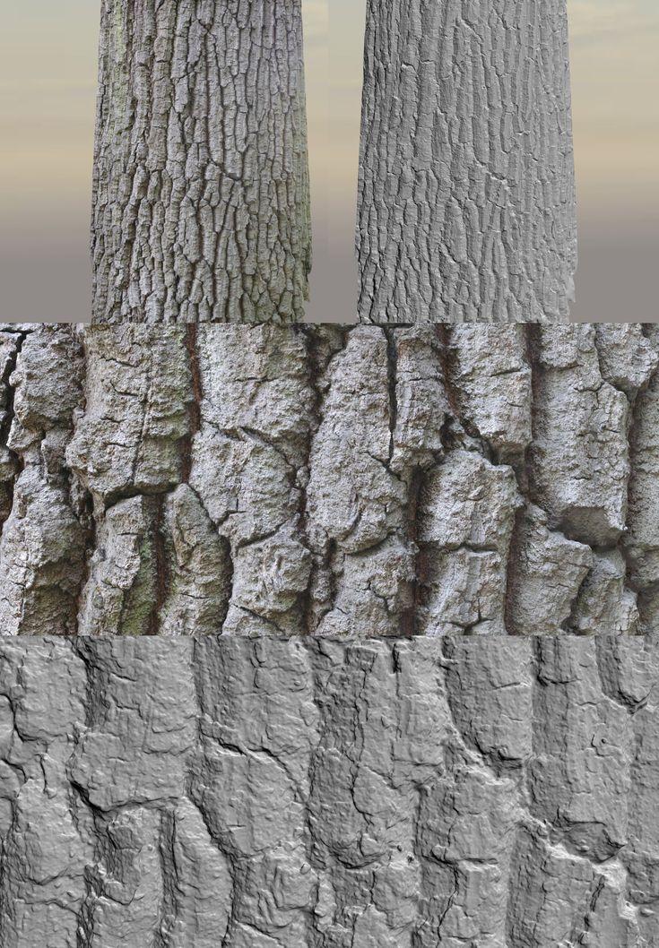 https://www.artstation.com/artwork/trees-3d-scanning