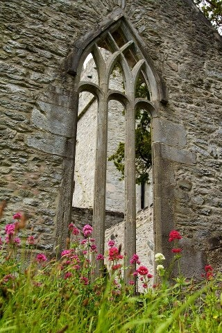 Muckross Abbey, Killarney 1448