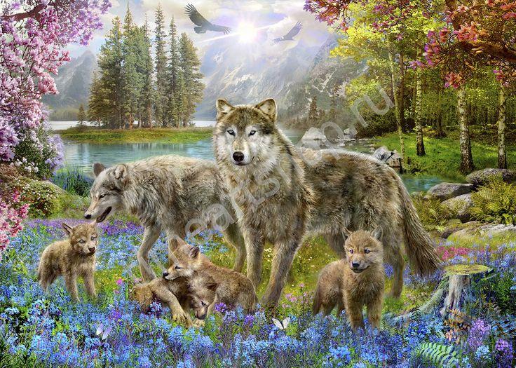 Семья волков, картина раскраска по номерам, картина своими ...