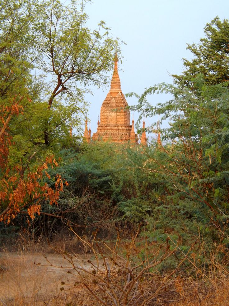 After watching the sun rise over the plains of Bagan, I stumbled, in a daze, through the arid land below and found this small pagoda, bronzed in the early light. Bagan, Myanmar (2014)