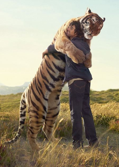 A human and a full grown tiger hugging.