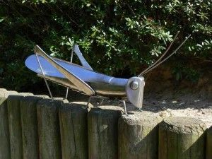 Plymouth Insects 4