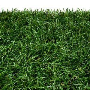 evolution of synthetic turf At target technologies international (ttii), we've got your artificial grass turf needs covered want to learn more about the history of the artificial turf industry and ttii's involvement with it and whatever your logistics requirements for synthetic sports turf infill, or for any of our other fine products – ttii is there for you.