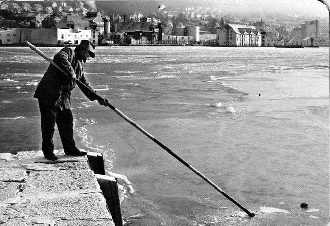 Bildet har teksten : Januar 1972 : Streng kulde la seg over Bergen tidlig dette året. De indre delene av Byfjorden frøs til solid is, og her ved Hegreneset i Sandviken var både hobbyfiske og båttrafikk umulig. Fotograf Sverre Mo. Fra kalenderen til BT 2010 Tidsbilder fra Bergen 1970-tallet.