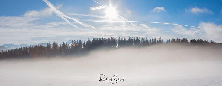 mystic fog - Mystische Nebelstimmung habe ich heute knapp über der Nebelgrenze erleben dürfen. Today I was allowed to experience a mystical mist mood just above the fog line.