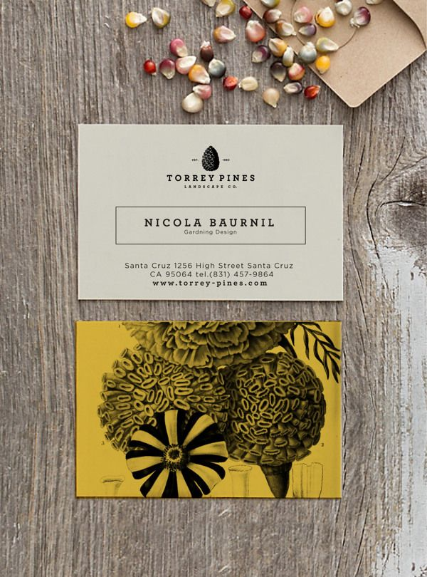 Torrey Pines by Estudio Selva, via Behance