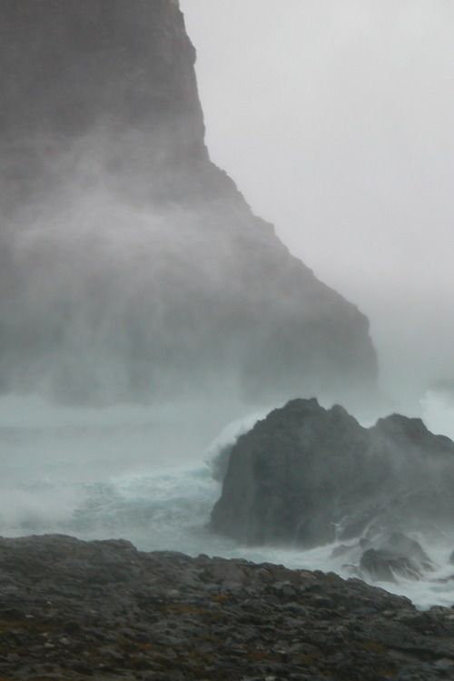 Here I came to the very edge / where nothing at all needs saying, / everything is absorbed through weather and the sea... ~Neruda
