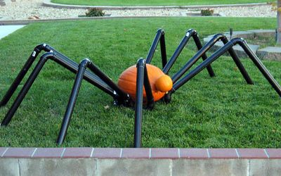 Halloween spider made with PVC pipes and pumpkins!  ~Ashbee Design: Halloween Decorations, Holiday Ideas, Spiders, Pipe Spider, Pvc Pipes, Pumpkin Spider, Halloween Ideas, Halloween Spider