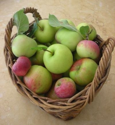 green and red apples in basket. apples green and red in basket