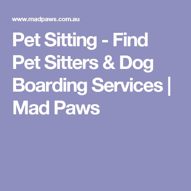 Pet Sitting - Find Pet Sitters & Dog Boarding Services | Mad Paws
