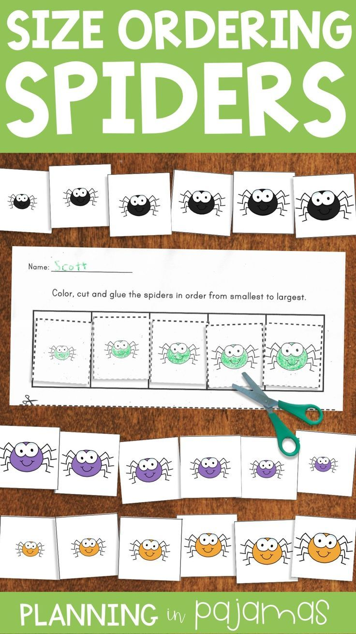 Spiders Size Ordering Activities Cards And Differentiated Worksheets To Add To A Halloween Theme Hall Spiders Preschool Kindergarten Centers Elementary Math [ 1308 x 736 Pixel ]