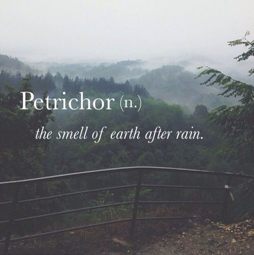 Petrichor is the earthy scent produced when rain falls on dry soil. I LOVE this smell.