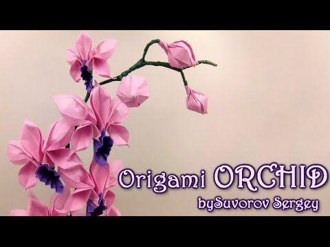 How to make Origami Orchid by Suvorov Sergey - Yakomoga Origami tutorial - YouTube