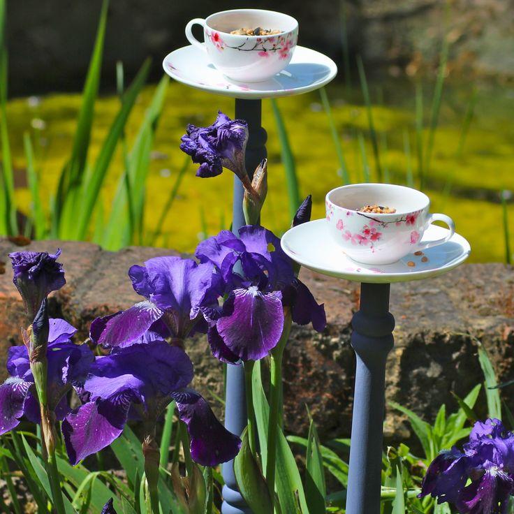 teacups  birdfeeders