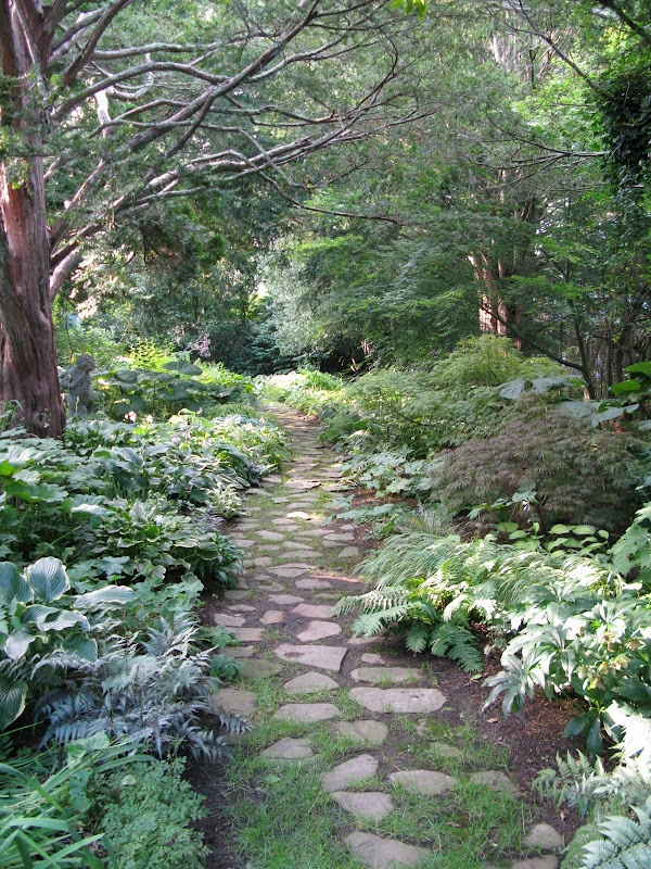 1000 images about shade garden on pinterest for Low maintenance bushes for shade