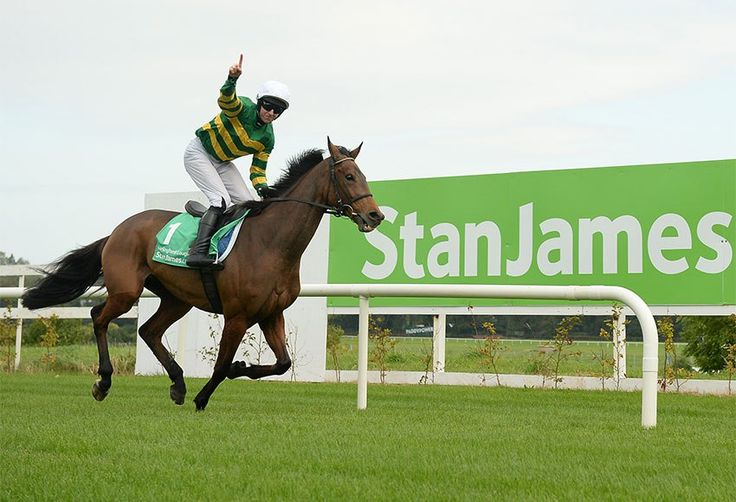THE STAN JAMES IRISH GOLD CUP DAY (Friday - 12th February 2017)  One of the most prestigious and glamorous race days in the National Hunt Season, this is Ireland's only race meeting to feature four Grade 1s on a single day.