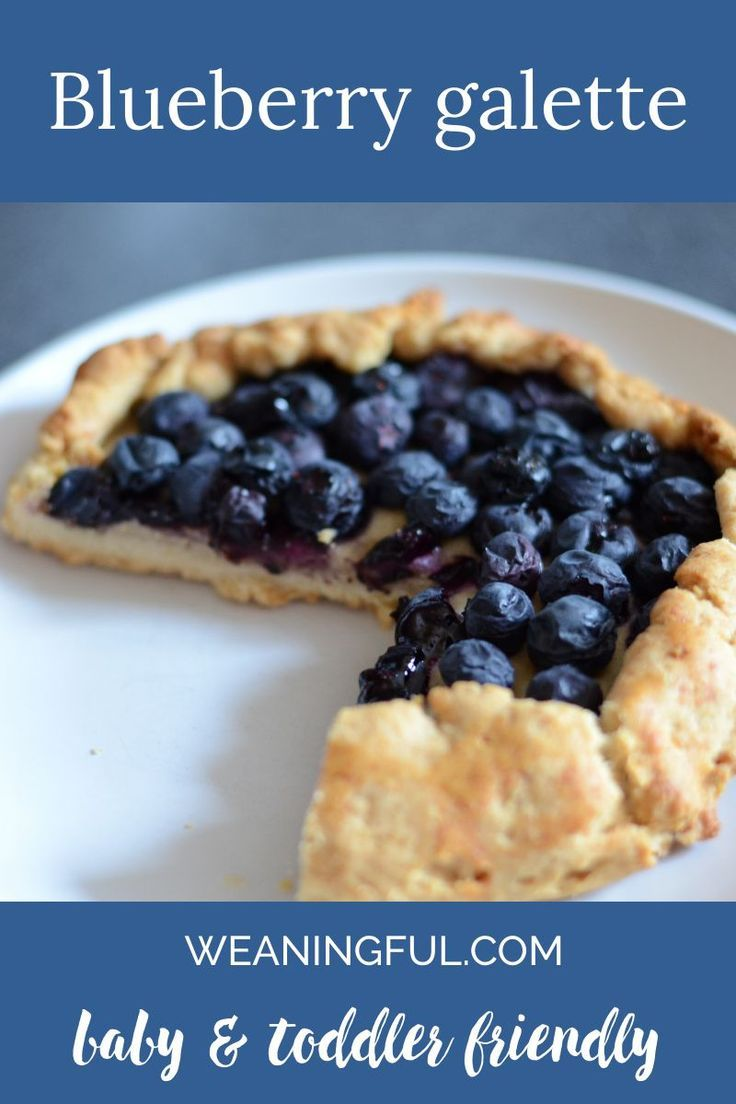 baby led weaning blueberries